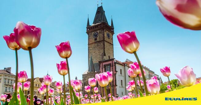 Tallinn - Prague