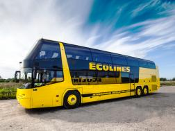 Neoplan - ECOLINES buss